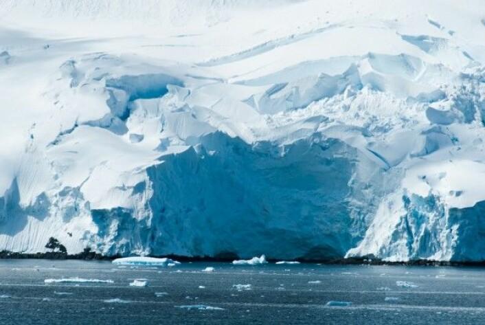 I en verden uten mennesker ville det være mer is. (Foto: Ayamik / Shutterstock / NTB scanpix)