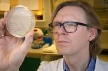 Pål Jarle Johnsen er professor ved institutt for farmasi, UiT Norges arktiske universitet. (Foto: UiT)