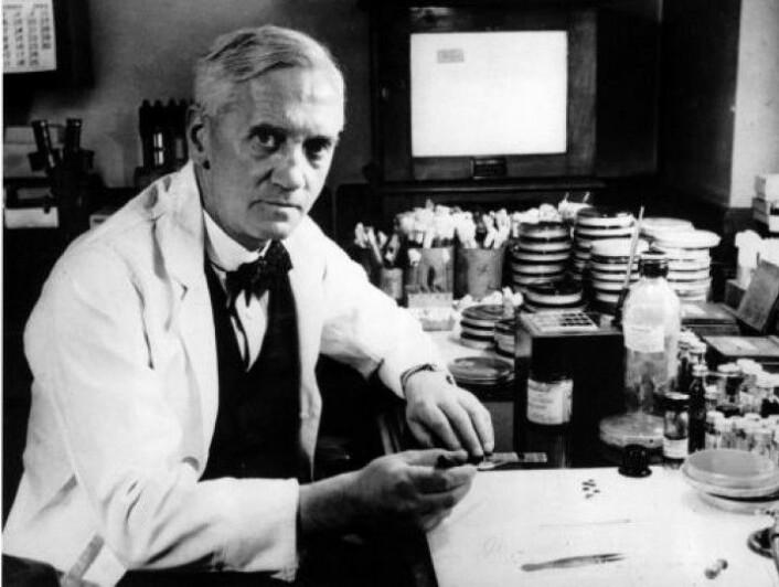 Alexander Flemming oppdaget penicillin i 1928, men det skulle ta over ti år før det ble en medisin (Foto: New York Times).