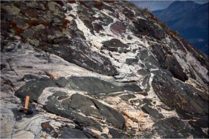 Berggrunnen er en del av naturmangfoldet i Norge. På vestlandet finner vi den eksotiske bergarten eklogitt. Den ble dannet dypt nede i jordskorpa, under den kaledonske fjellkjededannelsen for om lag 400 millioner år siden. (Foto: Ane Engvik / NGU)