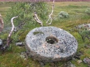 I Selbufjellene har glimmerskifre blitt brukt til å lage kvernsteiner gjennom flere århundre. Vår nye tidsalder krever utnyttelse av en rekke nye mineraler for å drive samfunnsutviklingen videre. (Foto: Ane K. Engvik)