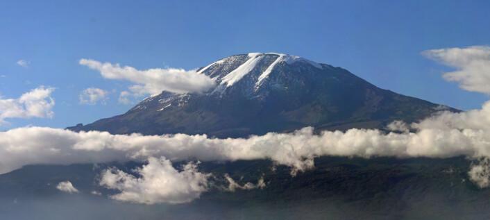 Kilimanjaro i Tanzania. (Foto: Muhammad Mahdi Karim/gfdl 1.2)