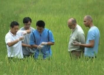 NIVA-forskere samarbeider med kinesiske kolleger om løsninger på kvikksølvproblemet. (Foto: Thorjørn Larssen / SINOMER)