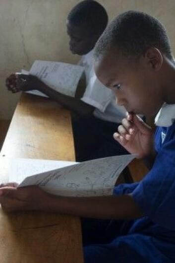 Ugandiske elever fordyper seg i lærebøkene om helse. (Foto: Sarah Rosenbaum/Informed Health Choices)